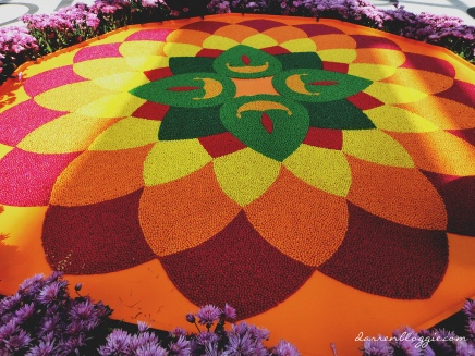 Gardens by the Bay Celebrates Deepavali with A New Flower Field Display!
