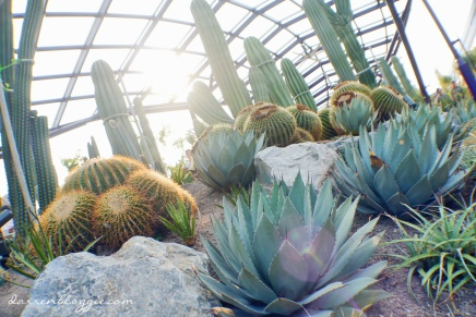 [NEW in the Gardens!] The Sun Pavilion, New Prickly Attraction at Gardens by the Bay