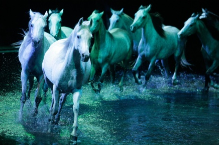 Cavalia Gallops to Asia for First Time at Marina Bay!