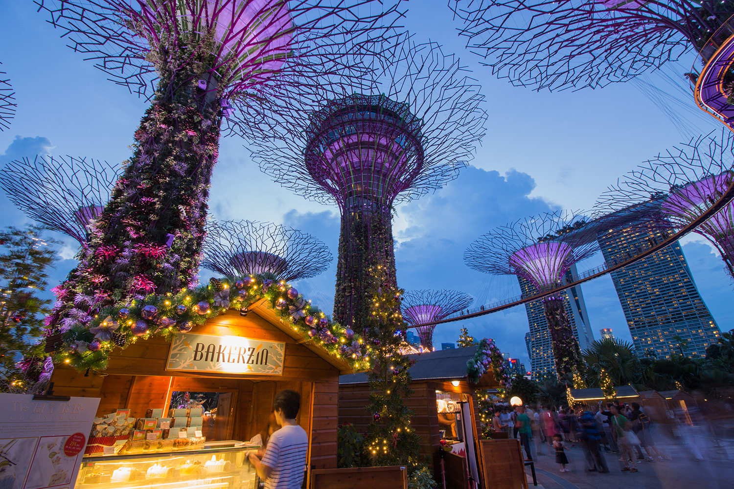 Christmas Wonderland at Gardens by the Bay 03